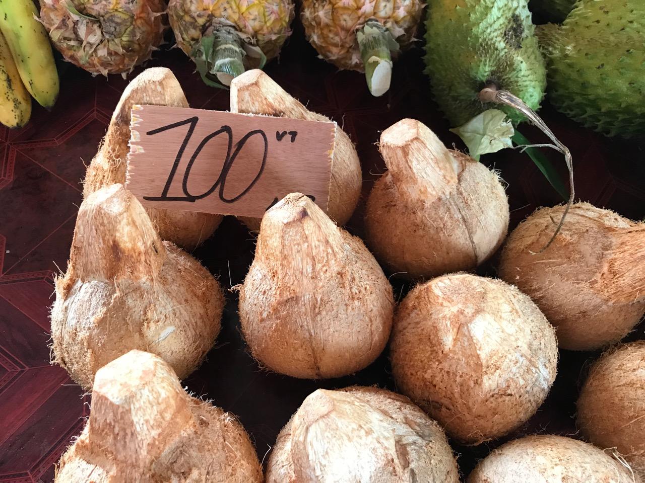 coconuts in Port Vilza